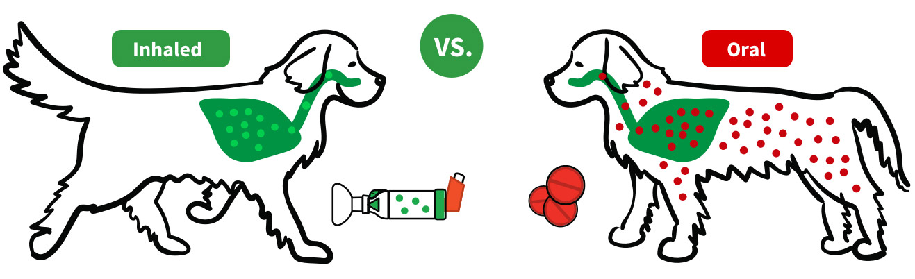 Dogs inhaled vs oral
