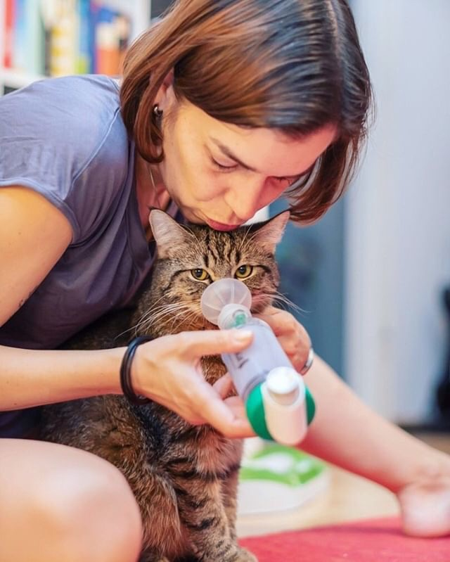 woman with inhaler and chamber and cat
